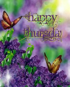 Happy Thursday! http://karenfreyer.myplexusproducts.com
