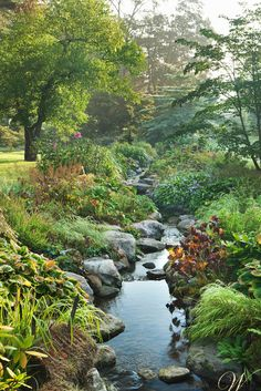 Design by Wadia Associates.