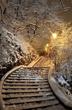 traintrack in the snow