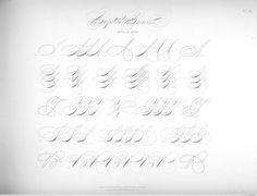 Шаблоны для занятий скорописью (Из разных источников) Calligraphy Worksheet, Copperplate Calligraphy, Calligraphy Practice, Caligraphy, Alphabet Style, Flourish, Handwriting, Hand Lettering, Worksheets