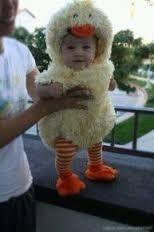 「ひよこ 着ぐるみ 赤ちゃん」の画像検索結果