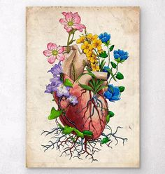Floral heart anatomy I - Old paper