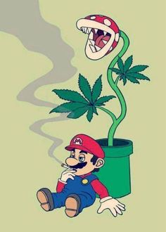 La il est le vrai Mario ! https://www.15heures.com/photos/p/52625/