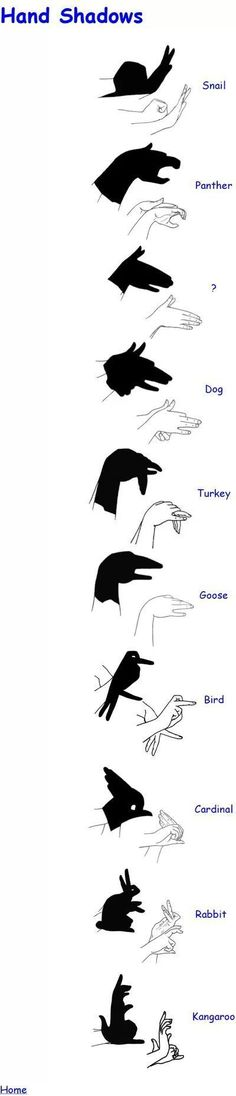 shadow puppets!! Mais