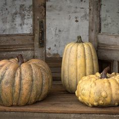 Large for maximum showiness on a porch or patio. Sculpted like actual heirlooms from cast resin in autumnal hues. Set of three. Pumpkin Vegetable, A Pumpkin, Park Hill Collection, Pumpkin Decorating, Porch, Vegetables, Autumnal, Resin, Patio