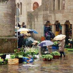 Mercado de abastos de Santiago de Compostela. Galicia. Spain
