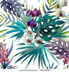 Sorteo Fotos en stock, Sorteo Fotografía en stock, Sorteo Imágenes de stock : Shutterstock.com