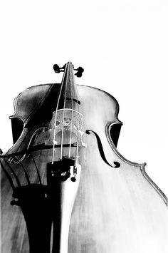 Cello by Morgan Ferrell