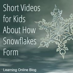 Your kids can learn how snowflakes form from these short videos. Kindergarten Science, Science Classroom, Science Education, Teaching Science, Science For Kids, Science Activities, Physical Education, Snow Activities, Science Guy