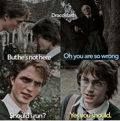 Harry Potter Mems, Harry Potter Comics, Harry Potter Wizard, Draco Harry Potter, Harry Potter Tumblr, Harry James Potter, Harry Potter Anime, Harry Potter Pictures, Harry Potter Universal