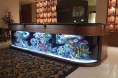 Top liste – die interessanteste modern Aquarium Design | KunsTop.de http://kunstop.de/top-liste-die-interessanteste-modern-aquarium-design/ #Top #liste #interessanteste #modern #Aquarium #Design #KunsTop