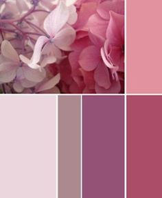 Rich Mauves--great Valentine's Day colors!!