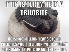 God is man made. This is Terry, he is a trilobite. He is 400 million years old. He predates your religion, your god and all humanity. Pick up another book. Atheist Humor, Atheist Quotes, Atheist Agnostic, Religious Humor, Secular Humanism, Anti Religion, Christianity, At Least, Faith