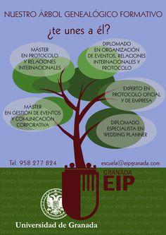 EipGranada tiene también su árbol genealógico.
