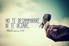 No te desampararé ni te dejaré.. Hebreos 12:5 /Frases ♥ Cristianas ♥