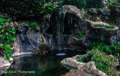 Bom Jesus do Monte:) Foto de Jorge Silva