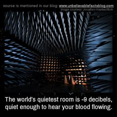 The world's quietest room is -9 decibels, quiet enough to hear your blood flowing. It is so quiet that the longest anybody has been able to bear it is 45 minutes.