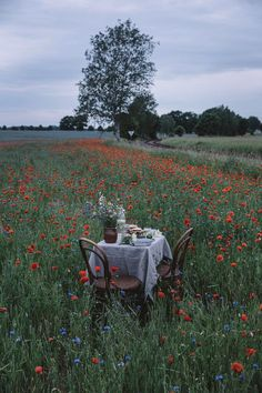 Image uploaded by Miranda Linn. Find images and videos about aesthetic, flowers and landscape on We Heart It - the app to get lost in what you love. Nature Aesthetic, Summer Aesthetic, Hotel Crillon, Cheese Burger, Photo Images, Back To Nature, Country Life, Dream Life, Beautiful Places