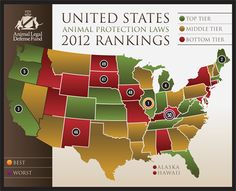 Animal Protection Laws Rankings™ Animal Legal Defense Fund Releases Year-End Report Ranking State Animal Cruelty Laws Animal Cruelty Laws, Animal Rescue, Alaska, Animal Law, Animal Protection, Animal Welfare, Animal Rights, Pet Health, United States