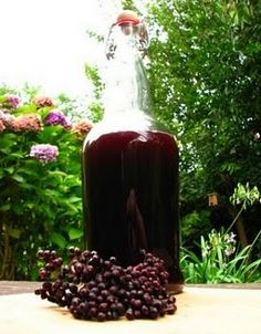 In The Raw: Elderberry: The People's Medicine Chest