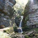 Treppen, Wasserfälle und Ruhebänke. Typisch Pouetta Raisse Plants, Painting, Poet, Stairways, Musik, Painting Art, Paintings, Plant, Painted Canvas
