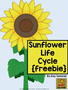 Summer's Lion Pride: Sunflower Life Cycle {FREE} Source by sommerlionpride Teaching Science, Kindergarten Activities, Teaching Ideas, Bilingual Kindergarten, Teaching Plants, Preschool Learning, Learning Centers, Teaching Tools, Sequencing Activities
