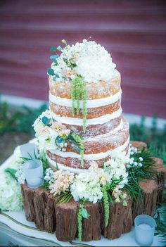 Best of the best Naked Cakes that you ever did see!