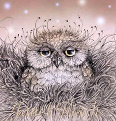 Owl illustration - how we feel first thing in the morning