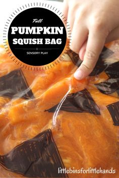 Pumpkin Sensory Bag Fall Activity. Explore pumpkins with a squish bag for a fun Fall sensory play activity that also makes a great Fall fine motor and Fall science activity for kids.