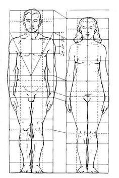 proporções cabeça humana - Pesquisa Google