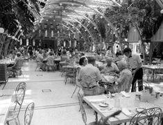 Old Florida: Larger than life: the Kapok Tree Restaurant