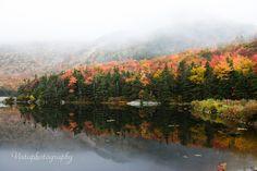 Beaver-pond-foliage, Maine