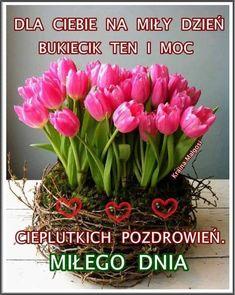 Humor, Plants, Polish, Pictures, Cheer, Ha Ha, Funny Humor, Lifting Humor, Humour