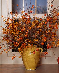 Fall branch arrangements are a simple and effective way to bring the colorful fruits and leaves of autumn into the home.