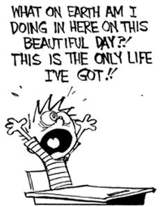 Bill Watterson's CAVIN AND HOBBES comic strip panel .... Most of us can feel this six year old's pain, wanting to get out of school or work, and out into nature. A FUNKY MOOD LIFTER.