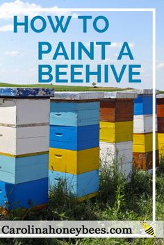 How to paint bee hives that last for years. Choose the right look to express your love of bees. Painting your first bee hive is a right of passage. via @https://www.pinterest.com/carolinahoneyb