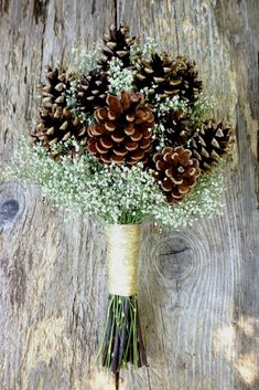 Items similar to Winter Wedding Pine Cone and Dried Baby's Breath Bouquet - Winter Snow Bridal Bouquet - Pine or Cedar Cone & Baby's Breath on Etsy Elegant Winter Wedding, Winter Wedding Flowers, Trendy Wedding, Perfect Wedding, Baby's Breath Wedding Flowers, Cheap Wedding Flowers, Cheap Flowers, Winter Bridal Bouquets, Winter Bouquet