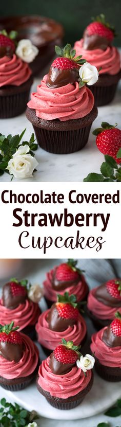 Chocolate Covered Strawberry Cupcakes - A rich, moist chocolate cupcake is topped with a boldly flavored, natural strawberry frosting and it's finished with a fresh chocolate covered strawberry. A cupcake worthy of any celebration! #cupcakes #chocolatecupcakes #chocolatecoveredstrawberries