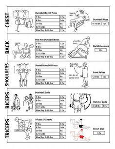 Fitness routine: workout routine using body weight Bodyweight Upper Body Workout, Upper Body Workout Routine, Workout Routine For Men, Best Ab Workout, Body Workouts, Week Workout, Chest Workouts, Dumbbell Workout, Cardio Gym