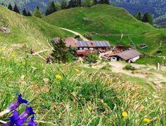 Kranzhornalm – Tirol