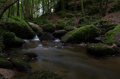 Ruisseau près de Nieul