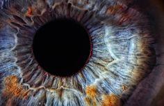 Augendiagnose – Was erzählen unsere Augen?