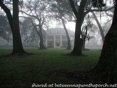 Houmas House Plantation and Gardens: Take the Tour