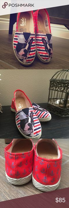 French Bulldog/ Boston Terrier Flats Shoes New French Bulldog/ Boston Terrier Flats Shoes  💕Very Cute💕 Shoes Flats & Loafers