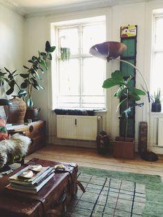 Scandinavian Interiors photographed by Emily Katz