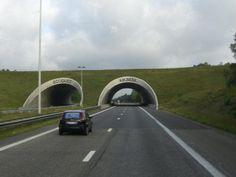 Ecoduct Kikbeek, Zutendaal, Belgium