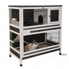 The Excellent Adventure Sanctuary. Buy The Right Size Guinea Pig Cage. Photo by maskarade Purchasing a guinea pig cage in a pet shop is unfortunately a good way to ensure that it is in fact too small for your pet's needs. Diy Guinea Pig Cage, Guinea Pig Hutch, Guinea Pig House, Bunny Hutch, Guinea Pigs, Rabbit Hutch Indoor, Indoor Rabbit Cage, Indoor Rabbit House, Bunny Cages