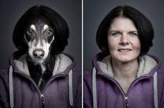 Do you see similarities Dogs and their owners