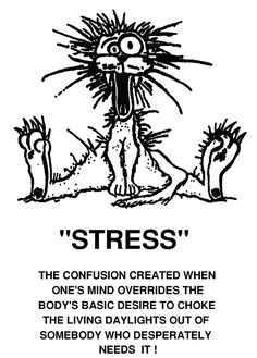 The definition of Stress - the confusion created when one's mind overides the body's basic desire to choke the living shit out of some asshole who desperately deserves it.