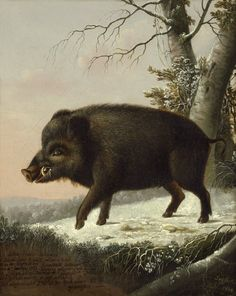 Eligius von Seyfert: A wild boar in a winter forest, 1804.